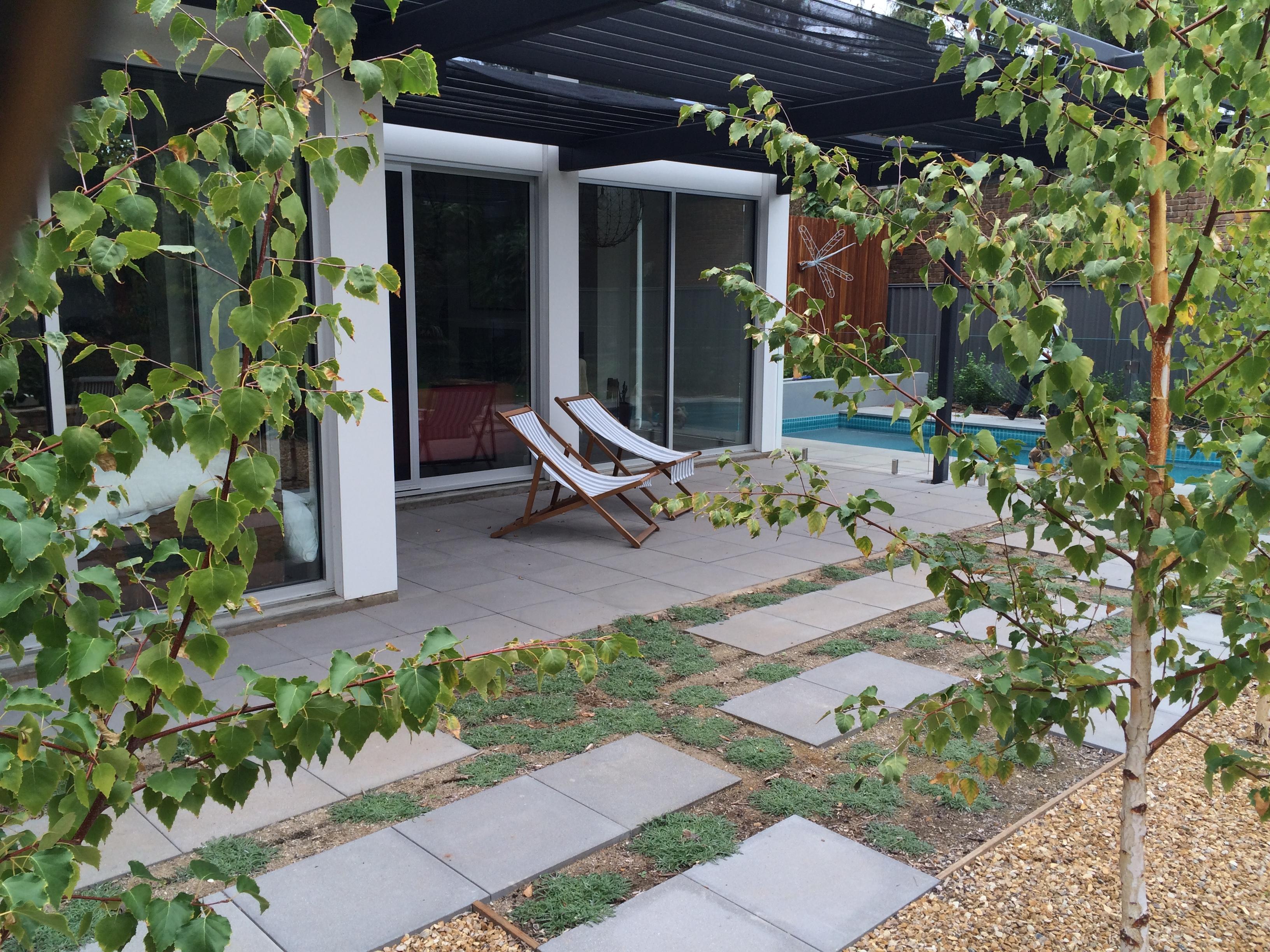 Hackney caroline dawes garden design adelaide for Garden design adelaide
